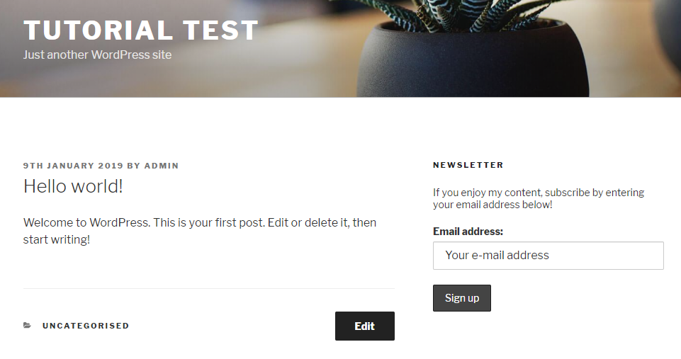 Mailchimp Signup Form Widget Example