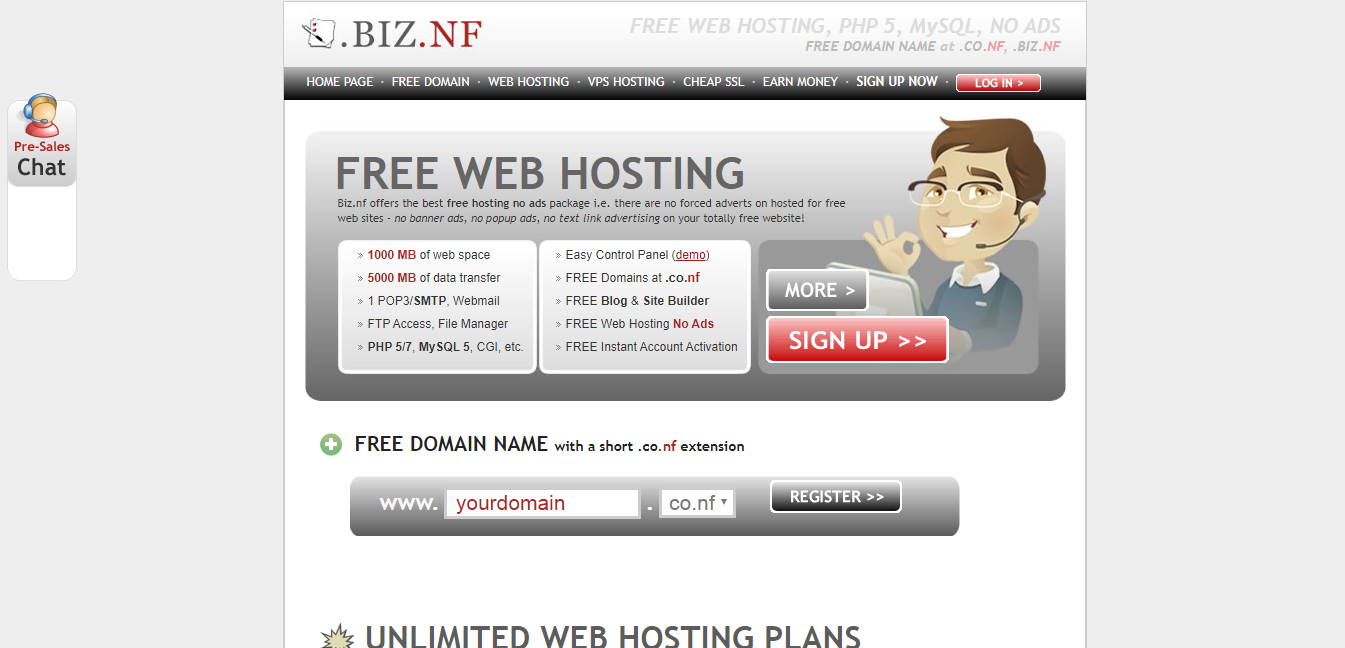 free domain name with biz.nf