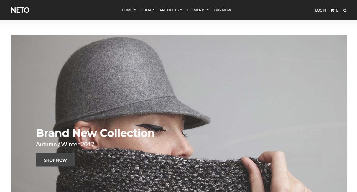 Neto best woocommerce theme